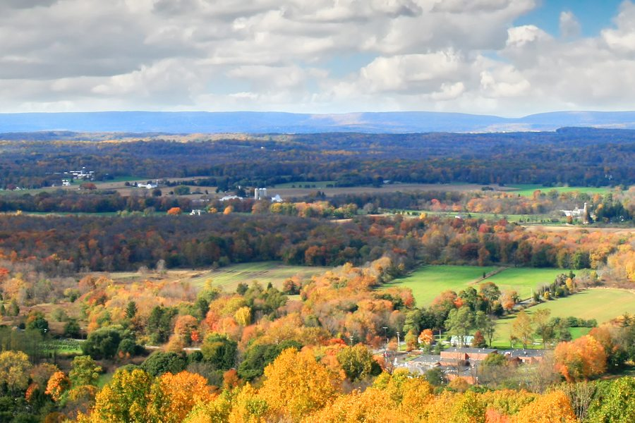 Photo of New Jersey farmland which can be found in Hunterdon County, home of our Flemington, NJ marketing firm.